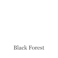 Adrian Sailer Art Black Forest